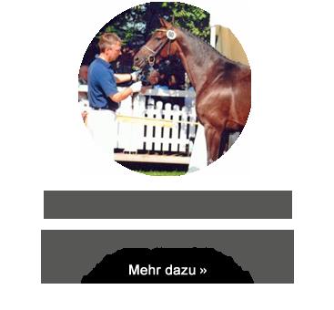 http://sieverding-zuchthof.de/st-pr-st-omegana-s/