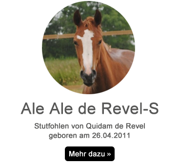 ale_ale_Revel