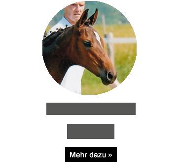 gluecksfeh