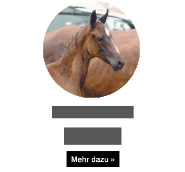 weisena